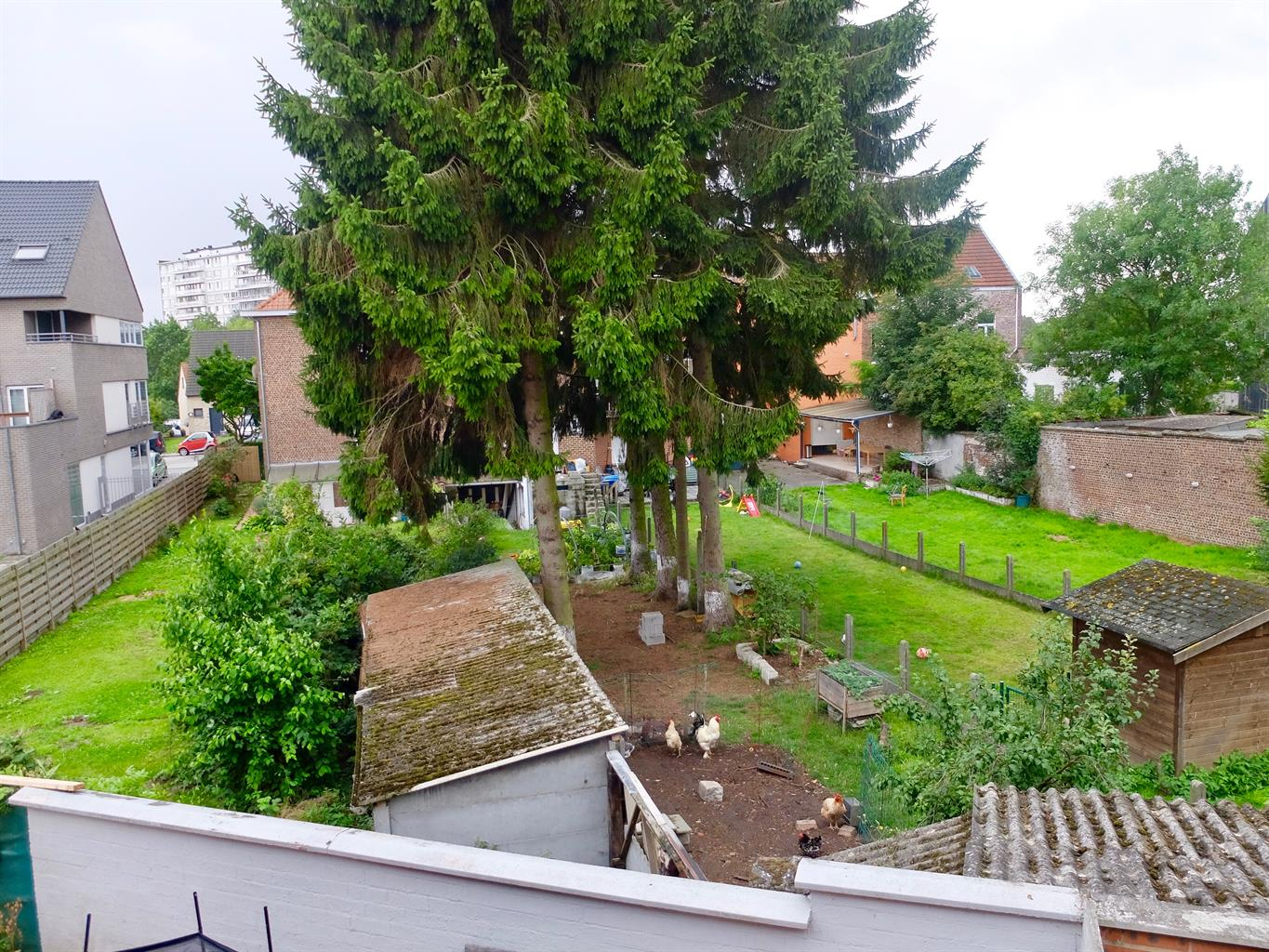 Semi-detached house - Asse Zellik - #3142779-11